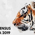 tiger-census-in-india
